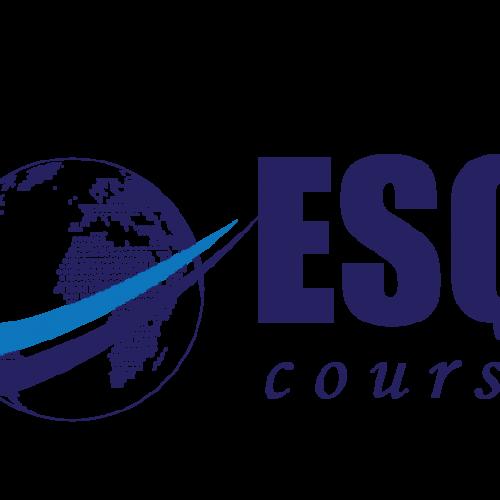 LOOGO ESQ COURSE | ESQ Course