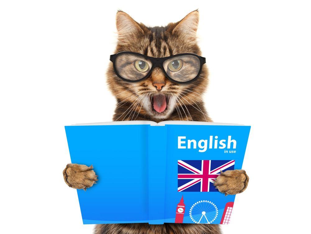 Kursus Bahasa Inggris 1